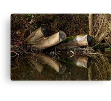 Stumps mirrored Canvas Print