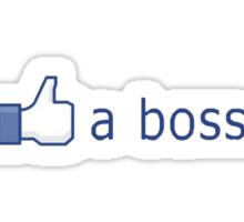 Like a boss! Sticker
