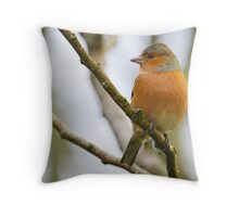 Chaffinch, The Rower, County Kilkenny, Ireland Throw Pillow