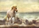 The Littlest Unicorn by Trudi's Images