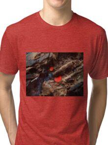 Scutellinia scutellata Tri-blend T-Shirt