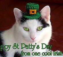 St Patty's Day by James Brotherton