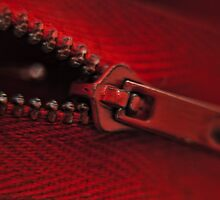 -ZiPPer- by donato radatti