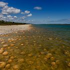 Lake Clifton - Thrombolites by Leah Kennedy