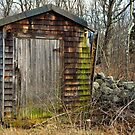 The Shed  by John  Kapusta