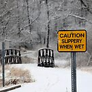 Slippery When Wet by Brian Gaynor