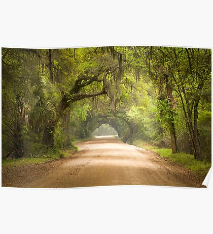 Charleston SC Edisto Island Dirt Road - The Deep South Poster