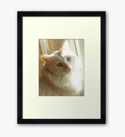 It's a natural thing Framed Print