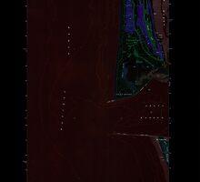USGS Topo Map Washington State WA Point Brown 243162 1955 24000 Inverted by wetdryvac