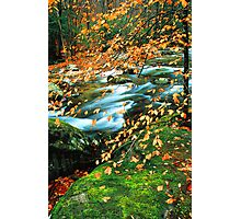 AUTUMN ALONG MIDDLE PRONG LITTLE RIVER Photographic Print