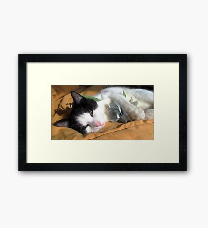 Stop to Sniff the Flowers Framed Print