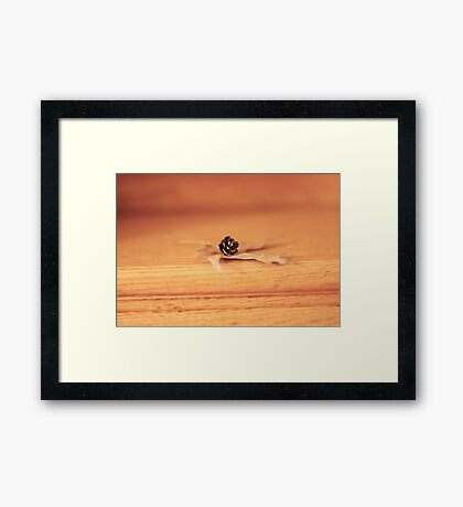 winter fibres Framed Print