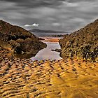Dollar Bay, Wexford, Ireland by Royston Palmer