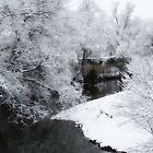 Dreamy Snow by Jaclyn Hughes