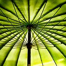 Parasol by Simon Duckworth