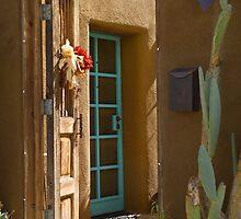 Barrio Doors by Linda Gregory