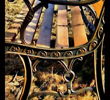 Rusted Bench on Sunburnt Grass by LeftHandPrints