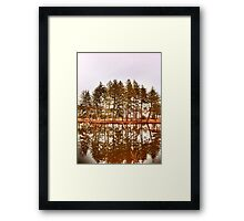Mirror Images Of Trees Framed Print