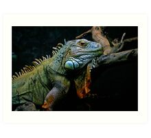 Sleepy Dinosaur Art Print