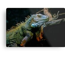Sleepy Dinosaur Metal Print