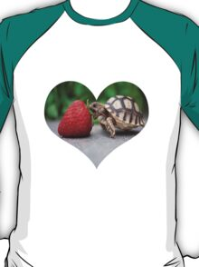 A Turtle Love Affair T-Shirt