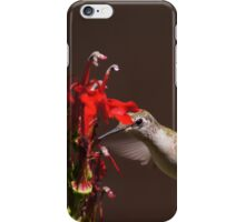 Hummingbirds Love Cardinal Flower iPhone Case/Skin