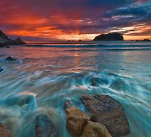 Motuotau Island Dawn Fan Rush by Ken Wright
