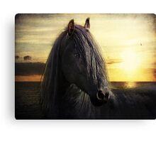 frisian sunrise Canvas Print