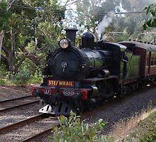 Ashburton Steam Train by wolfmarx
