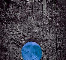 On An Eerie Path by DmitriyM