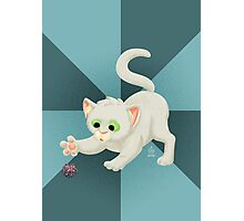 Nerdy Kitty Photographic Print