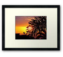 Visit at Sunset Framed Print