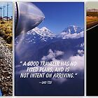 A GOOD TRAVELER by Betsy  Seeton