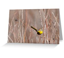 Rufous-capped Warbler dexterity Greeting Card