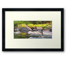Frankland river Framed Print