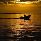 Homeward bound in a golden sunset by doriss