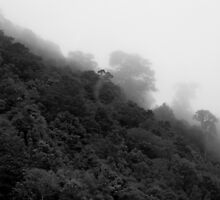 Mystical Mountain by DianaM