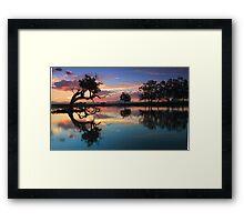 Moruya .Home of the black swan Framed Print