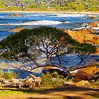 bremer bay  by warren dacey