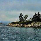 Maine Morning Scene by Carolyn  Fletcher