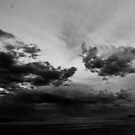B&W Sunset by Alex Evans