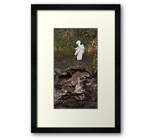 Early Morning Ablutions Framed Print