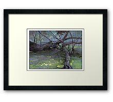 Poplar tangle Framed Print
