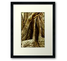Many Faces of Tree Framed Print