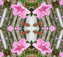 Pink Azaleas 1E kaleidoscope 5 by Christopher Johnson