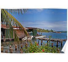 Panama. Bocas del Toro. Colon Island. Poster