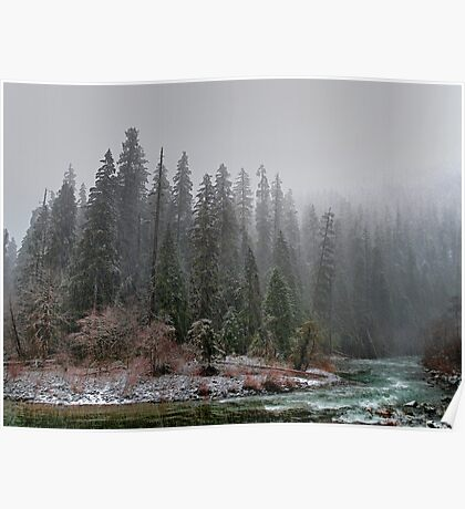 The Way We See It ~ Quartzville Creek ~ Poster