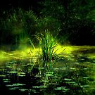 Mystic water by Yool