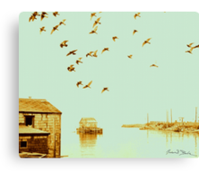 Flight at Peggy's Cove Canvas Print