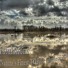 Mother Nature's Finest Challenge Banner by Dale Lockwood